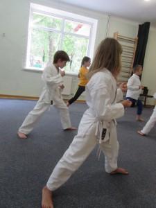 shkola-perlyna-attestatsiya-karate-098