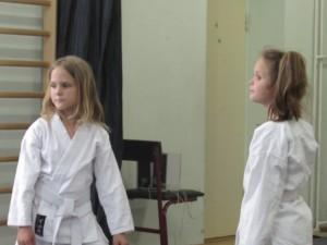 2015.06 karate