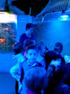 oceanarium-perlyna-10