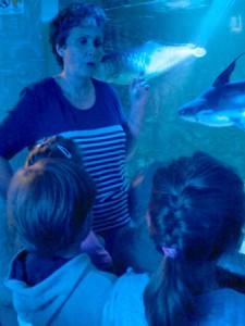 oceanarium-perlyna-11