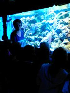 oceanarium-perlyna-3
